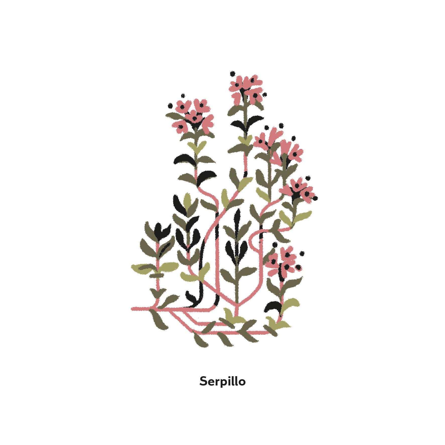Serpillo